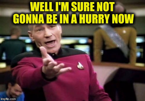 Picard Wtf Meme | WELL I'M SURE NOT GONNA BE IN A HURRY NOW | image tagged in memes,picard wtf | made w/ Imgflip meme maker
