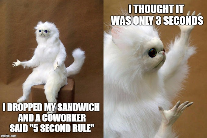 "What happened to standards! | I DROPPED MY SANDWICH AND A COWORKER SAID ""5 SECOND RULE"" I THOUGHT IT WAS ONLY 3 SECONDS 