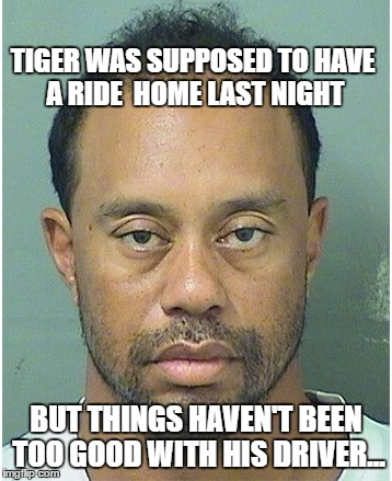 TIGER WOODS YALL | TIGER WAS SUPPOSED TO HAVE A RIDE  HOME LAST NIGHT BUT THINGS HAVEN'T BEEN TOO GOOD WITH HIS DRIVER... | image tagged in tiger woods,arrest,mugshot,drunk,driving | made w/ Imgflip meme maker