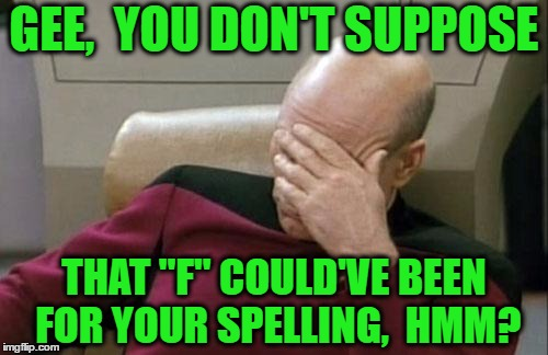 "Captain Picard Facepalm Meme | GEE,  YOU DON'T SUPPOSE THAT ""F"" COULD'VE BEEN FOR YOUR SPELLING,  HMM? 
