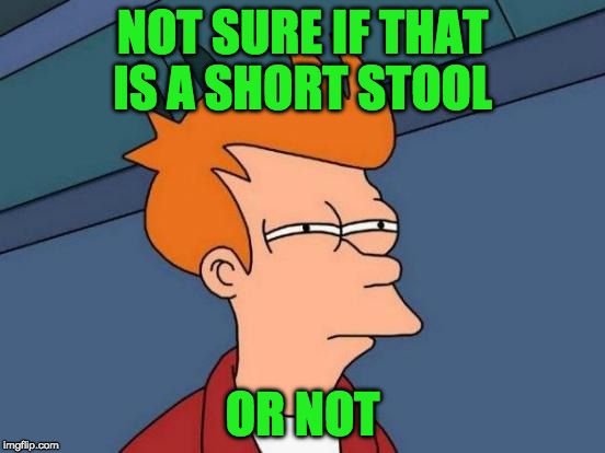 Futurama Fry Meme | NOT SURE IF THAT IS A SHORT STOOL OR NOT | image tagged in memes,futurama fry | made w/ Imgflip meme maker