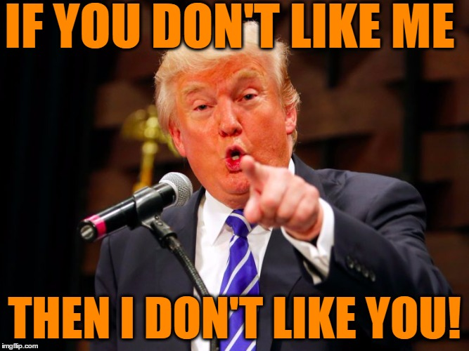 trump point | IF YOU DON'T LIKE ME THEN I DON'T LIKE YOU! | image tagged in trump point | made w/ Imgflip meme maker