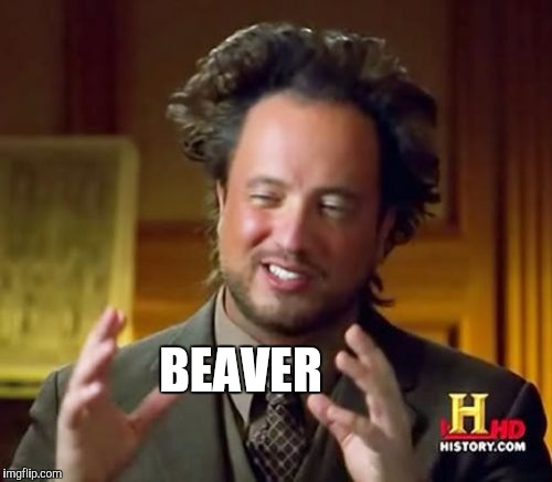 Ancient Aliens Meme | BEAVER | image tagged in memes,ancient aliens | made w/ Imgflip meme maker