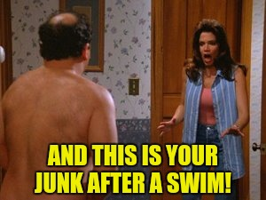 AND THIS IS YOUR JUNK AFTER A SWIM! | made w/ Imgflip meme maker