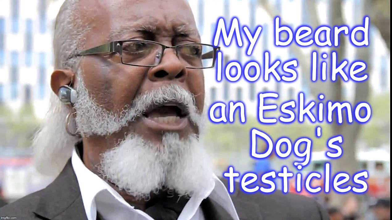 'pardon me, my eyes are up here!' | My beard looks like an Eskimo Dog's testicles | image tagged in testicles,too damn high | made w/ Imgflip meme maker