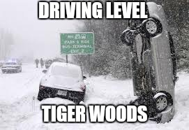 DRIVING LEVEL TIGER WOODS | made w/ Imgflip meme maker