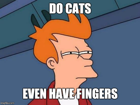 Futurama Fry Meme | DO CATS EVEN HAVE FINGERS | image tagged in memes,futurama fry | made w/ Imgflip meme maker