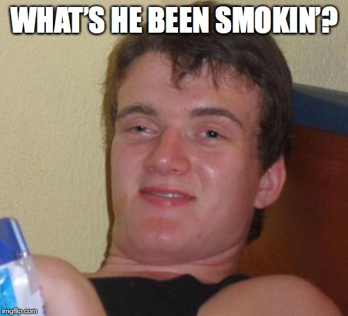10 Guy Meme | WHAT'S HE BEEN SMOKIN'? | image tagged in memes,10 guy | made w/ Imgflip meme maker