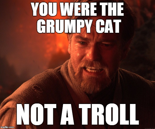 YOU WERE THE GRUMPY CAT NOT A TROLL | made w/ Imgflip meme maker