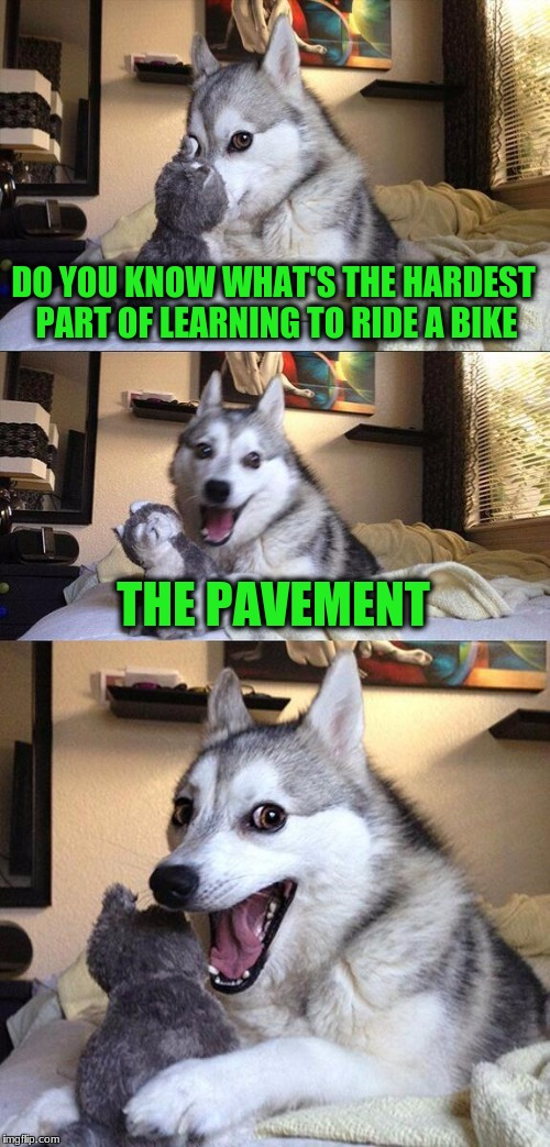 Bad Pun Dog Meme | DO YOU KNOW WHAT'S THE HARDEST PART OF LEARNING TO RIDE A BIKE THE PAVEMENT | image tagged in memes,bad pun dog | made w/ Imgflip meme maker