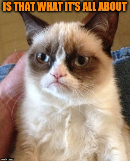 Grumpy Cat Meme | IS THAT WHAT IT'S ALL ABOUT | image tagged in memes,grumpy cat | made w/ Imgflip meme maker