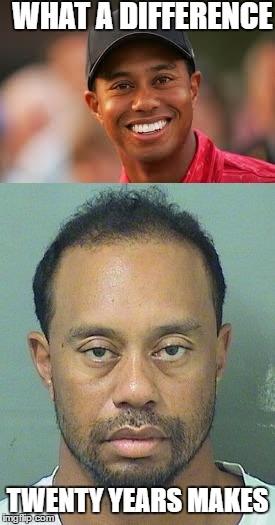 Sad downhill journey | WHAT A DIFFERENCE TWENTY YEARS MAKES | image tagged in tiger woods | made w/ Imgflip meme maker