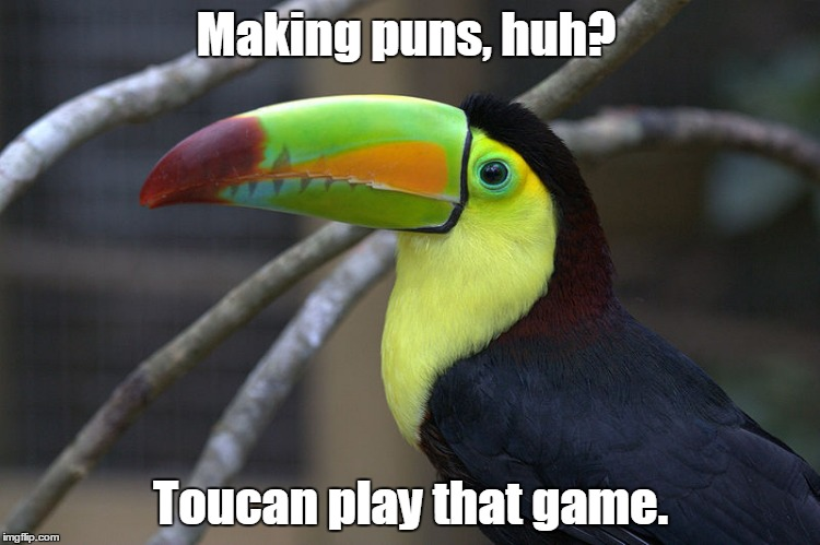 Making puns, huh? Toucan play that game. | image tagged in hard toucan | made w/ Imgflip meme maker