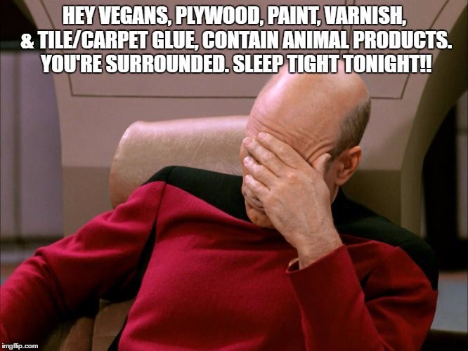 Vegans | HEY VEGANS, PLYWOOD, PAINT, VARNISH, & TILE/CARPET GLUE, CONTAIN ANIMAL PRODUCTS. YOU'RE SURROUNDED. SLEEP TIGHT TONIGHT!! | image tagged in vegans,house,sleep,funny,funny memes | made w/ Imgflip meme maker