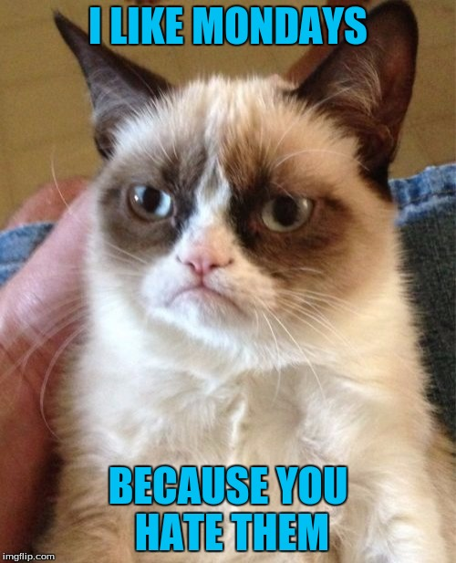 Grumpy Cat Meme | I LIKE MONDAYS BECAUSE YOU HATE THEM | image tagged in memes,grumpy cat | made w/ Imgflip meme maker