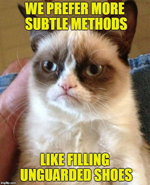 Grumpy Cat Meme | WE PREFER MORE SUBTLE METHODS LIKE FILLING UNGUARDED SHOES | image tagged in memes,grumpy cat | made w/ Imgflip meme maker
