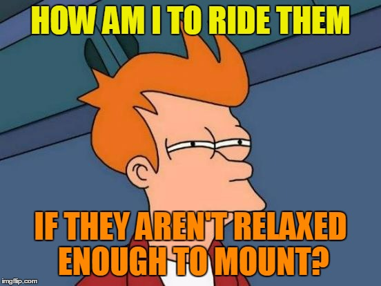 Futurama Fry Meme | HOW AM I TO RIDE THEM IF THEY AREN'T RELAXED ENOUGH TO MOUNT? | image tagged in memes,futurama fry | made w/ Imgflip meme maker