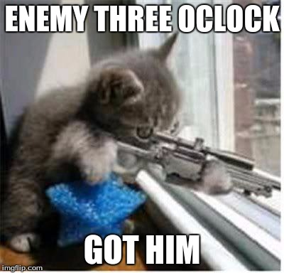 cats with guns | ENEMY THREE OCLOCK GOT HIM | image tagged in cats with guns | made w/ Imgflip meme maker