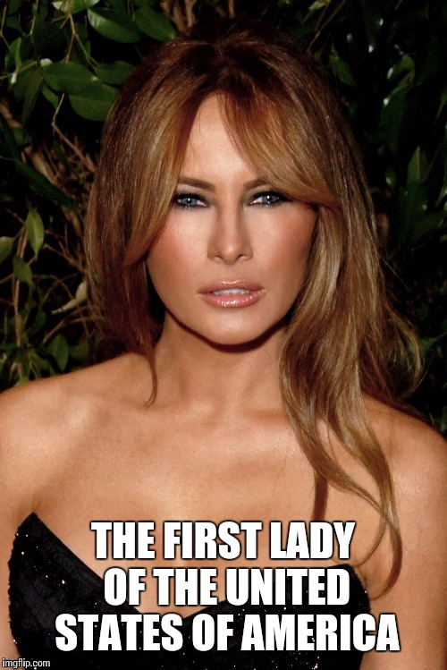 The other-worldly beautiful and skynet intelligent First Lady | THE FIRST LADY OF THE UNITED STATES OF AMERICA | image tagged in donald trump,first lady,memes | made w/ Imgflip meme maker