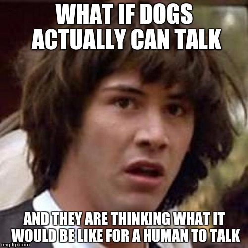 Conspiracy Keanu Meme | WHAT IF DOGS ACTUALLY CAN TALK AND THEY ARE THINKING WHAT IT WOULD BE LIKE FOR A HUMAN TO TALK | image tagged in memes,conspiracy keanu,talking dogs,humans,talking | made w/ Imgflip meme maker