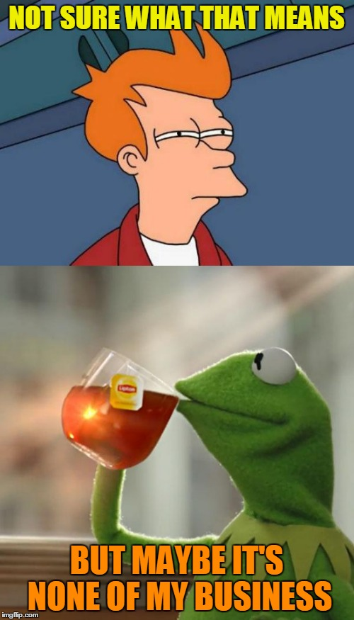 NOT SURE WHAT THAT MEANS BUT MAYBE IT'S NONE OF MY BUSINESS | made w/ Imgflip meme maker