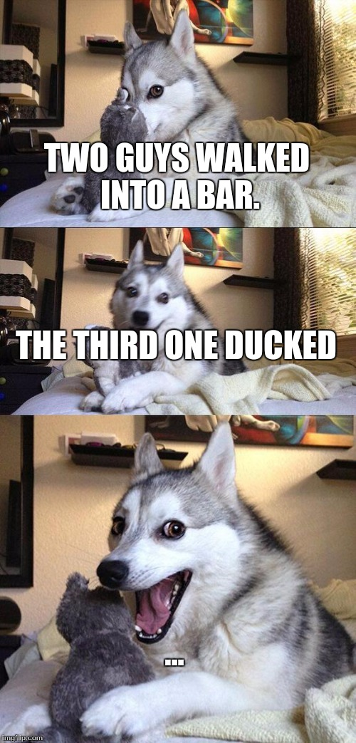 Bad Pun Dog Meme | TWO GUYS WALKED INTO A BAR. THE THIRD ONE DUCKED ... | image tagged in memes,bad pun dog | made w/ Imgflip meme maker