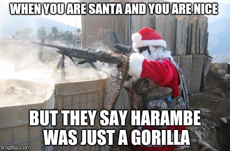 Hohoho Meme | WHEN YOU ARE SANTA AND YOU ARE NICE BUT THEY SAY HARAMBE WAS JUST A GORILLA | image tagged in memes,hohoho | made w/ Imgflip meme maker