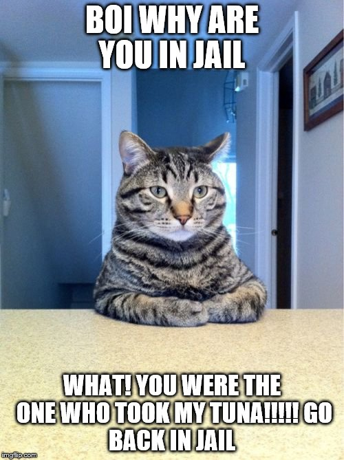 Take A Seat Cat Meme | BOI WHY ARE YOU IN JAIL WHAT! YOU WERE THE ONE WHO TOOK MY TUNA!!!!! GO BACK IN JAIL | image tagged in memes,take a seat cat | made w/ Imgflip meme maker