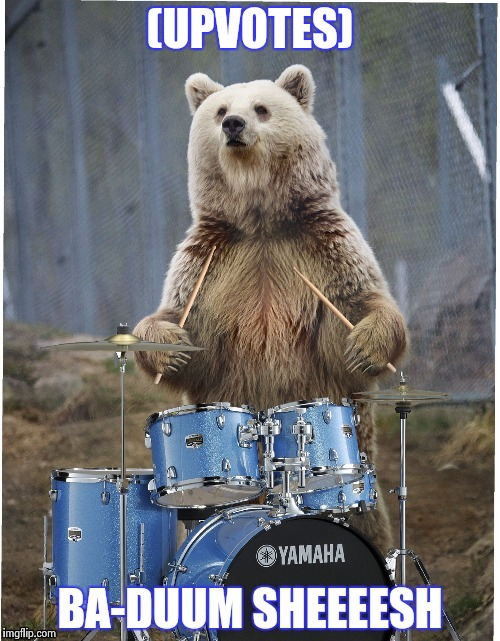 (UPVOTES) | image tagged in drummer bear | made w/ Imgflip meme maker