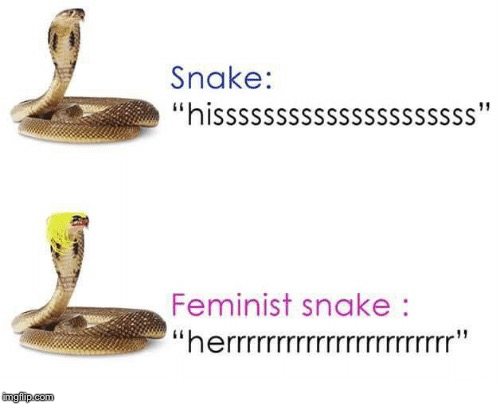 Feminism Snake... Who Knew It Was A Thing?  | image tagged in memes,funny,snake,animals,feminism | made w/ Imgflip meme maker