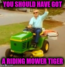 YOU SHOULD HAVE GOT A RIDING MOWER TIGER | made w/ Imgflip meme maker