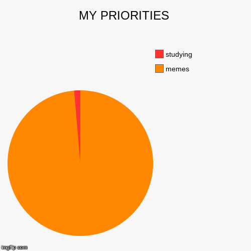 MY PRIORITIES | memes, studying | image tagged in funny,pie charts | made w/ Imgflip pie chart maker