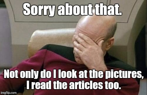 Captain Picard Facepalm Meme | Sorry about that. Not only do I look at the pictures, I read the articles too. | image tagged in memes,captain picard facepalm | made w/ Imgflip meme maker