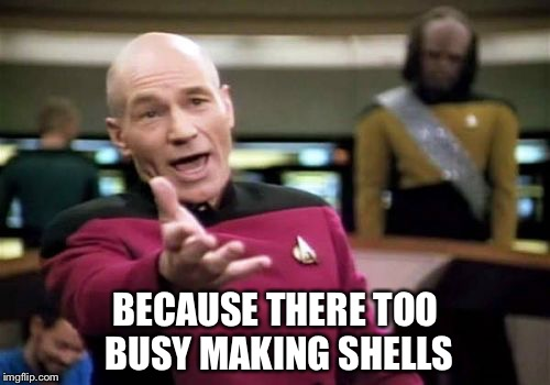 Picard Wtf Meme | BECAUSE THERE TOO BUSY MAKING SHELLS | image tagged in memes,picard wtf | made w/ Imgflip meme maker