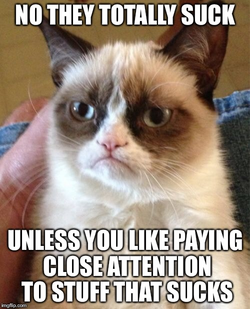 Grumpy Cat Meme | NO THEY TOTALLY SUCK UNLESS YOU LIKE PAYING CLOSE ATTENTION TO STUFF THAT SUCKS | image tagged in memes,grumpy cat | made w/ Imgflip meme maker