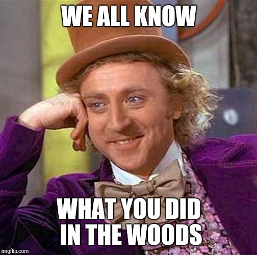 Creepy Condescending Wonka Meme | WE ALL KNOW WHAT YOU DID IN THE WOODS | image tagged in memes,creepy condescending wonka | made w/ Imgflip meme maker