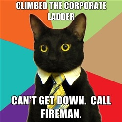 No one's heard much of the BUSINESS CAT meme :) | 4 | image tagged in funny,meme | made w/ Imgflip meme maker