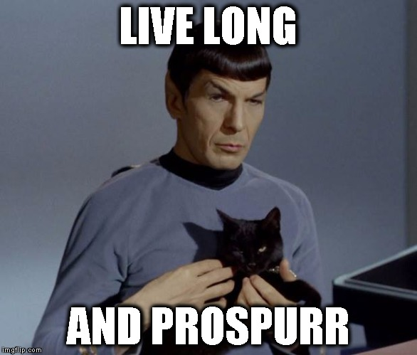 LIVE LONG AND PROSPURR | image tagged in vulcan kitten | made w/ Imgflip meme maker