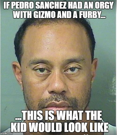 """Poor"" Tiger 