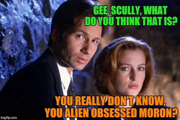 GEE, SCULLY, WHAT DO YOU THINK THAT IS? YOU REALLY DON'T KNOW, YOU ALIEN OBSESSED MORON? | made w/ Imgflip meme maker