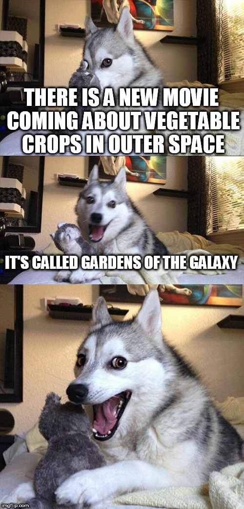 Bad Pun Dog Meme | THERE IS A NEW MOVIE COMING ABOUT VEGETABLE CROPS IN OUTER SPACE IT'S CALLED GARDENS OF THE GALAXY | image tagged in memes,bad pun dog | made w/ Imgflip meme maker