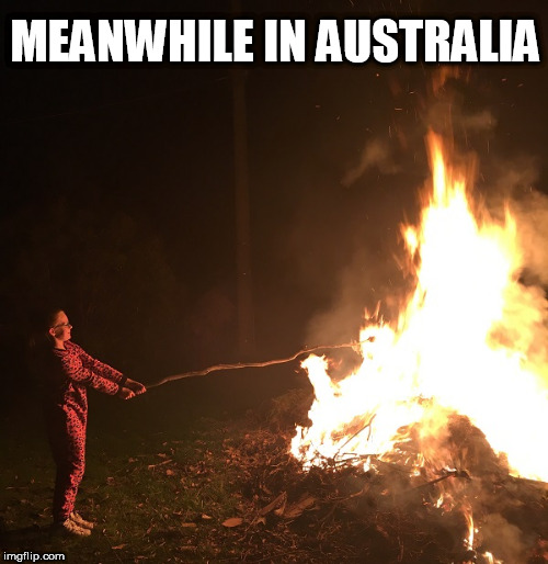 MEANWHILE IN AUSTRALIA | image tagged in australian marshmellow | made w/ Imgflip meme maker