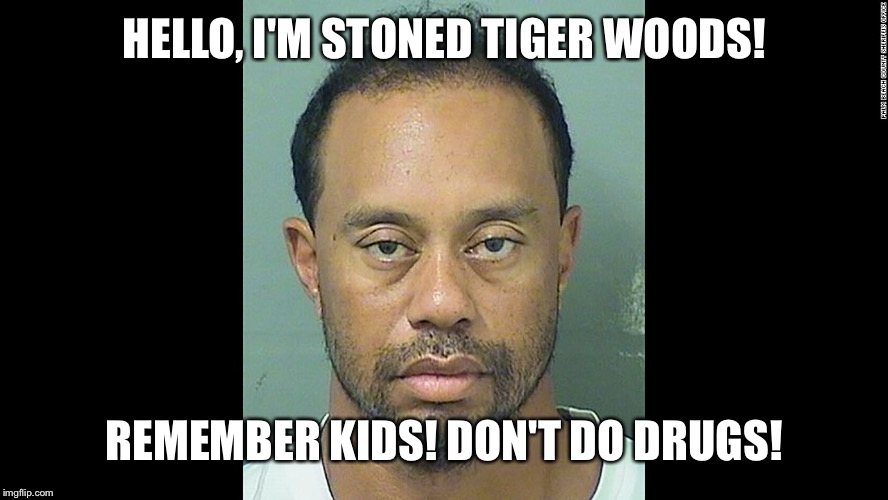 HELLO, I'M STONED TIGER WOODS! REMEMBER KIDS! DON'T DO DRUGS! | made w/ Imgflip meme maker