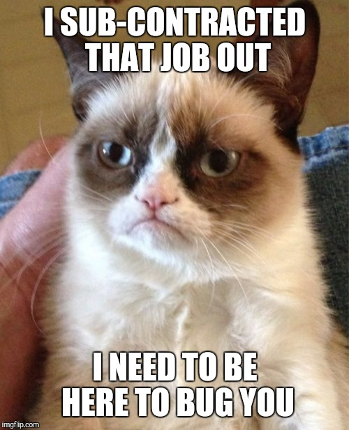 Grumpy Cat Meme | I SUB-CONTRACTED THAT JOB OUT I NEED TO BE HERE TO BUG YOU | image tagged in memes,grumpy cat | made w/ Imgflip meme maker