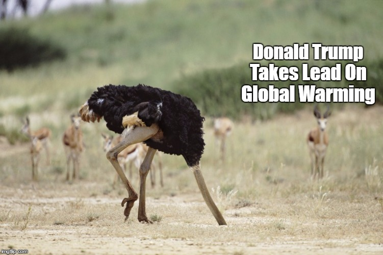 """Donald Trump Takes On Global Warming"" 
