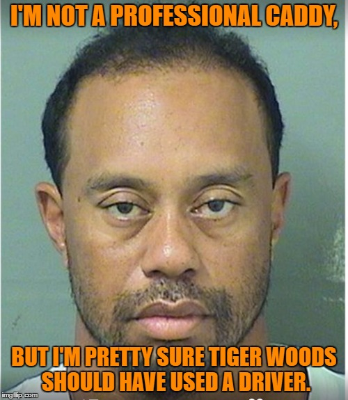 I'M NOT A PROFESSIONAL CADDY, BUT I'M PRETTY SURE TIGER WOODS SHOULD HAVE USED A DRIVER. | image tagged in tiger woods mug shot | made w/ Imgflip meme maker
