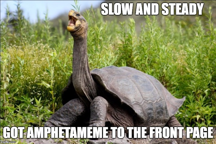 SLOW AND STEADY GOT AMPHETAMEME TO THE FRONT PAGE | made w/ Imgflip meme maker