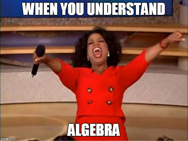 Oprah You Get A Meme | WHEN YOU UNDERSTAND ALGEBRA | image tagged in memes,oprah you get a | made w/ Imgflip meme maker