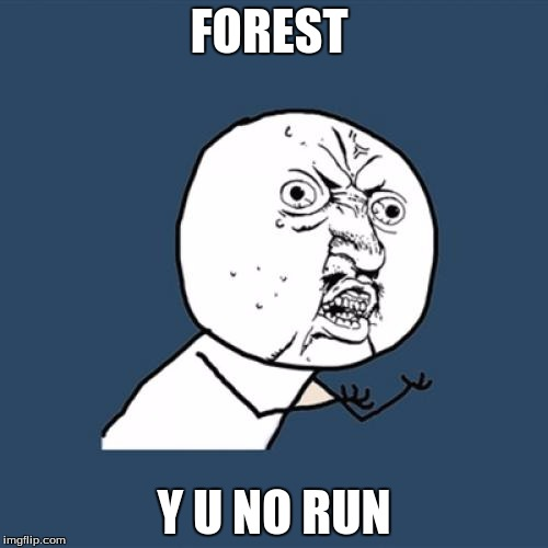 Y U No Meme | FOREST Y U NO RUN | image tagged in memes,y u no | made w/ Imgflip meme maker