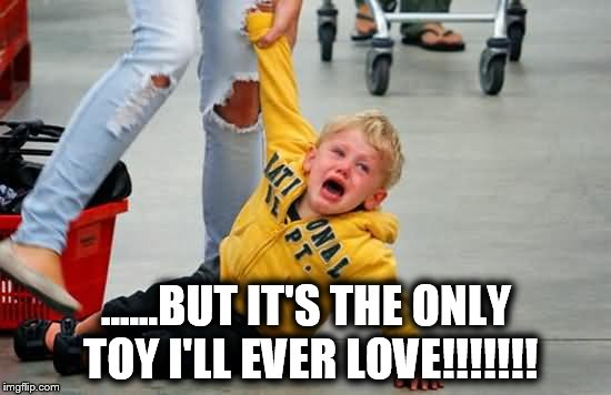 ......BUT IT'S THE ONLY TOY I'LL EVER LOVE!!!!!!! | image tagged in screaming kid,toys | made w/ Imgflip meme maker